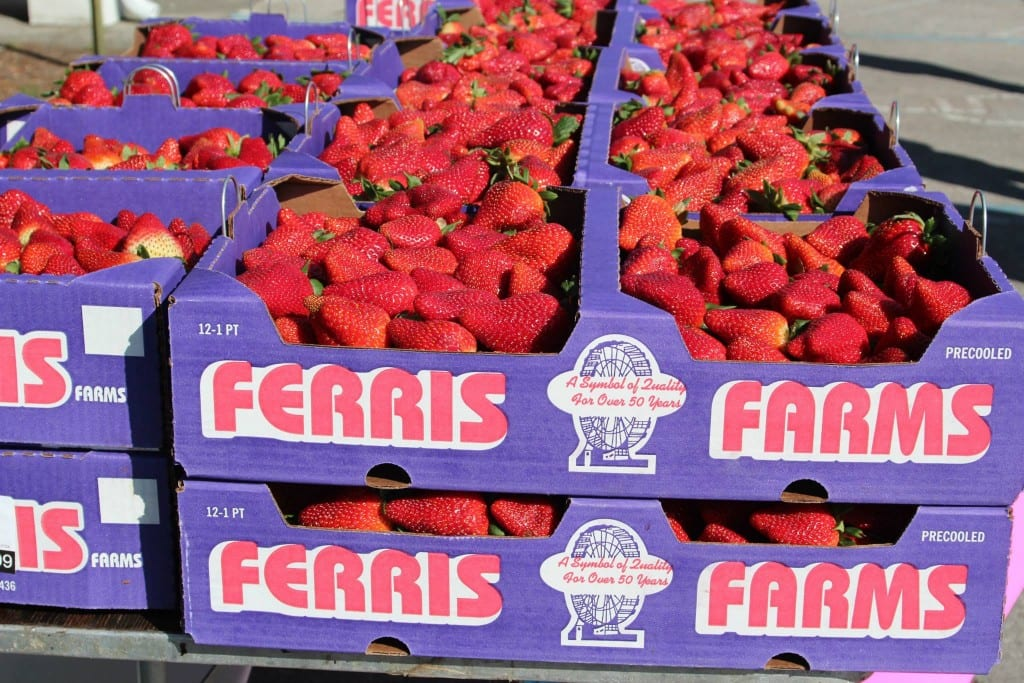 Ferris Berries, grown right in Floral City, are featured at the Floral City Strawberry Festival.