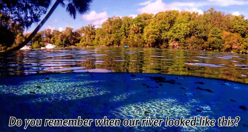 Homosassa River Restoration Project