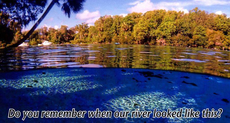 Homosassa River Restoration Project