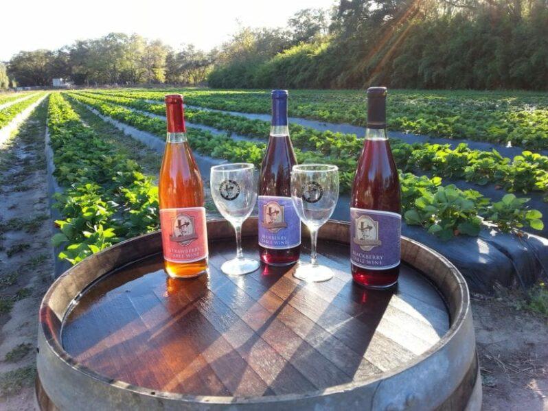 masaryk winery wine